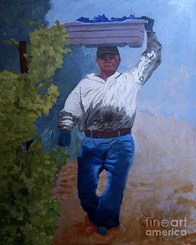 Vineyard Harvest I by Donna Schaffer
