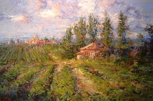 Vineyard in Tuscany by R W Goetting