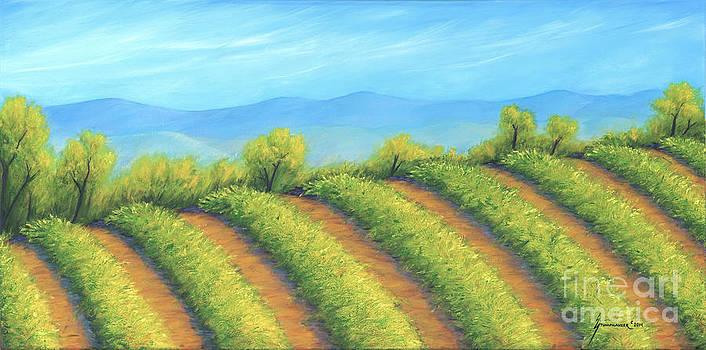 Vineyard by Jerome Stumphauzer