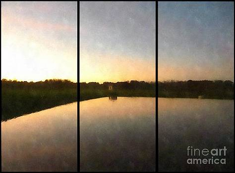 Vineyard Reflections Triptych by Jaclyn Hughes Fine Art