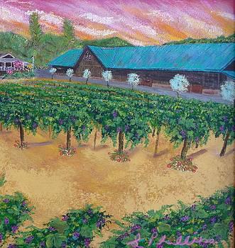 Vineyard Sunset by Scott Phillips