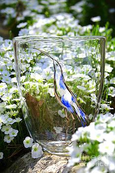Vinsanchi Glass Art-3 by Vin Kitayama