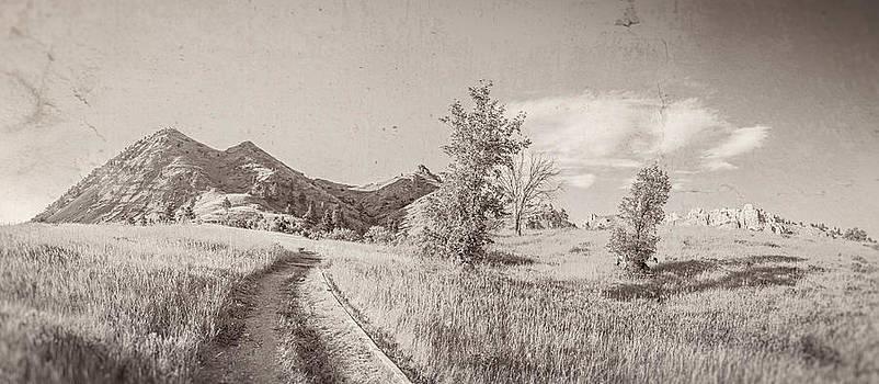 Ray Van Gundy - Vintage Bear Butte