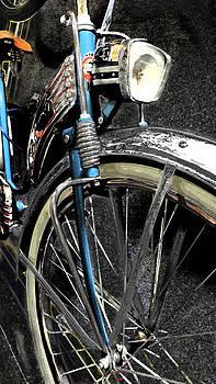 Vintage Bicycle by Joyce  Wasser