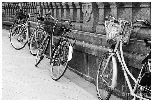 Sophie Vigneault - Vintage Bicycles