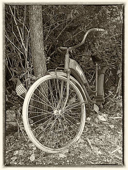 Vintage Bike In Woods by Susan OBrien