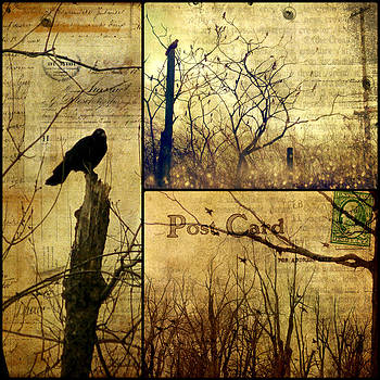Gothicrow Images - Vintage Birds Collage