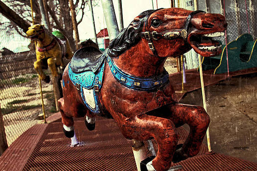 TONY GRIDER - Vintage Carousel Horses 008