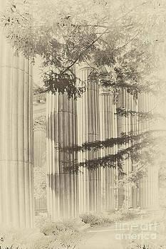 Vintage Columns by David Doucot