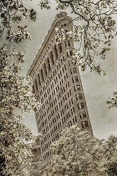 Chris McKenna - Vintage Flatiron Building