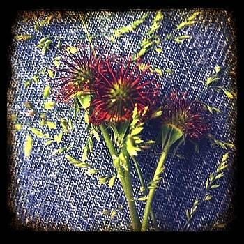 Vintage Floral Jeans by Tonya Mower Zitman