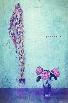 Vintage by Lillo Bonadonna