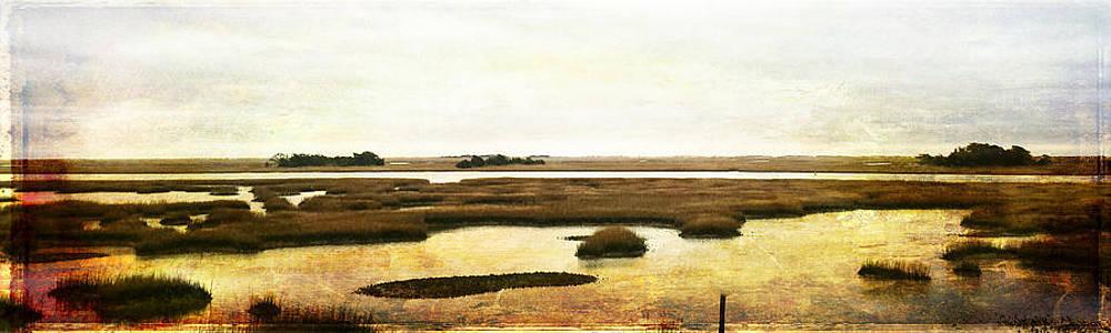 Vintage Marsh Panorama Image Art by Jo Ann Tomaselli