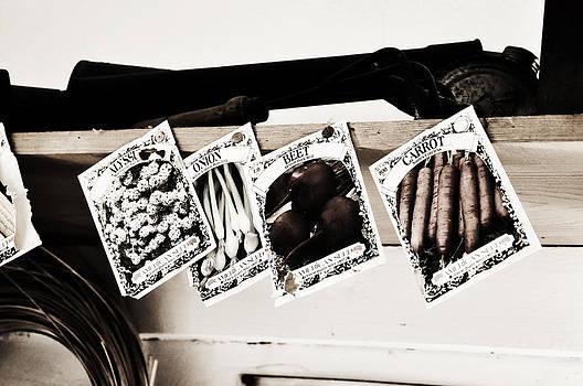 Rebecca Brittain - Vintage Seeds Packets