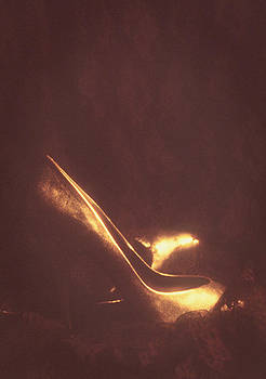 Stuart Brown - Vintage Shoes # 1