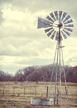 Vintage Texas  by Kimberly Danner