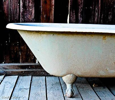 Vintage Tub by Cindi Castro