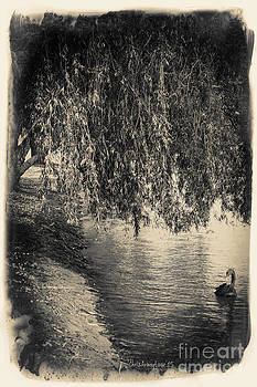 Vintage Views III - Tranquility by Chris Armytage
