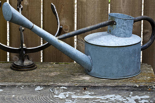 Sandra Foster - Vintage Watering Can In The Garden