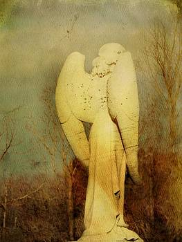 Gothicrow Images - Vintage Wings