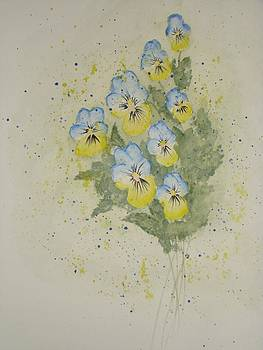 Viola by Chip Picott