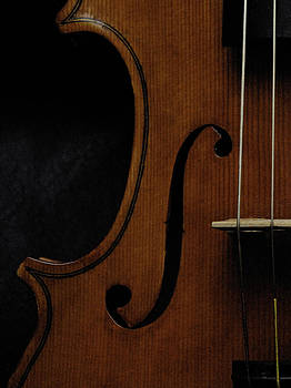 Viola No 1 Half A by Joseph Duba