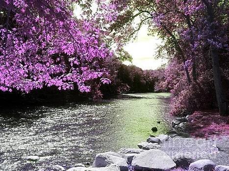 Violet Stream by Jon Glynn