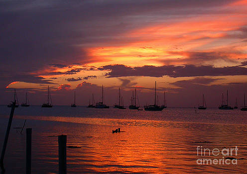 Violet Sunset Caye Caulker by Shelly Leitheiser