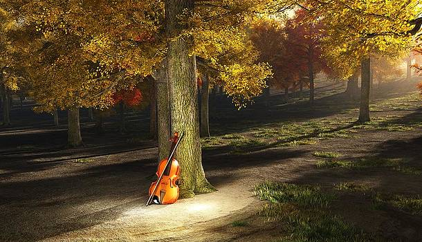 Violin in autumn park by Bruce Rolff