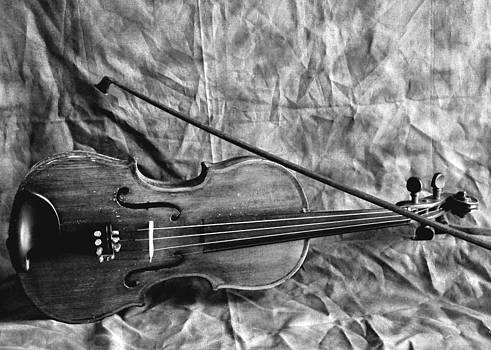 Violin in Black and White by Cherie Haines
