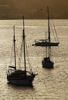 Ramunas Bruzas - Virgin Island Boats