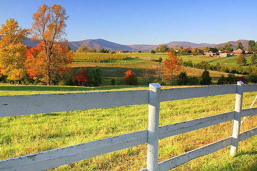 Anne Barkley - Virginia Autumn View