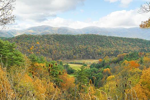 Virginia Fall Colors by Helen Ellis