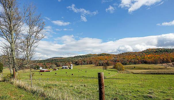 Country life in Virginia by Helen Ellis