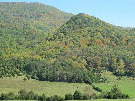 Virginia Mountainside by Sarah Manspile