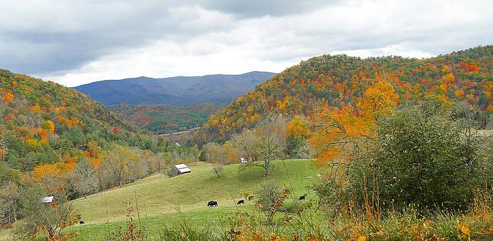 Virginia pastoral by Helen Ellis