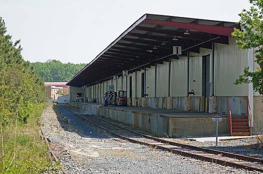 Steve Breslow - Virginia Rail