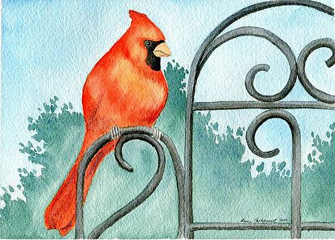 Visitor - Cardinal  by Laura Parkhurst