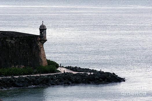 Vista de la Garita by Francisco Pulido