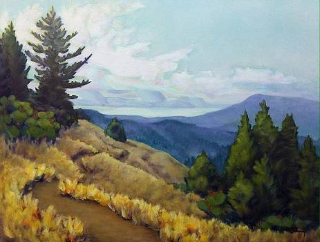 Vista on Summit Road by James Derieg