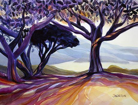 Vista Point by Jen Norton
