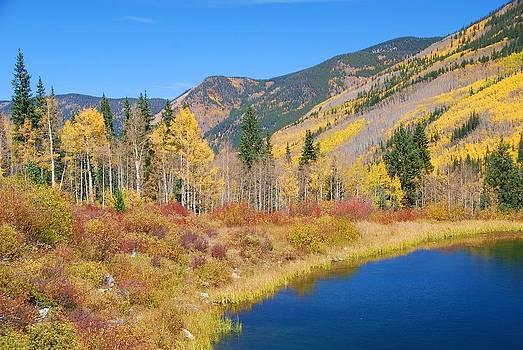 Vivid Colors of Autumn - Colorado Landscape by Cascade Colors