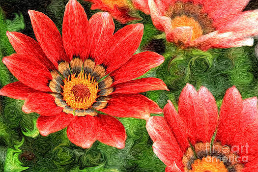 Beverly Claire Kaiya - Vivid Orange African Daisy Digital Oil Painting