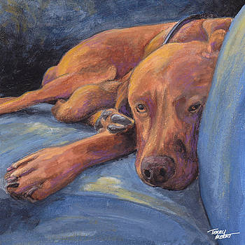 Vizsla napping by Terry Albert
