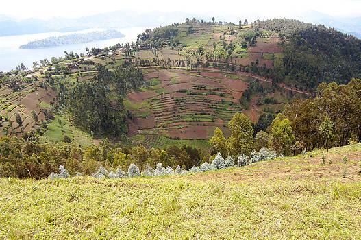 Volcano Farming by Paul Weaver