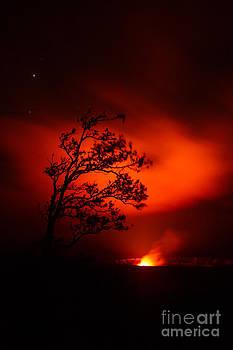 Volcano National Park Hawaii by Joanne Markiewicz
