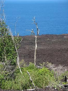 Volcano Rocks - Ile De La Reunion - Reunion Island by Francoise Leandre