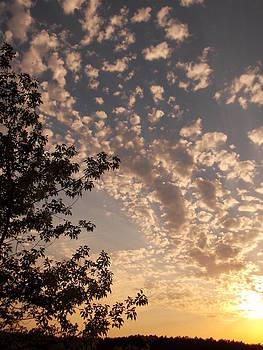 Volyn Sunset by Pavlo Kuzyk