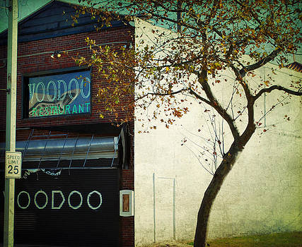 Voodoo by Sharon Coty