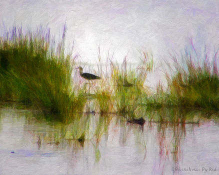 Wading by Melody McBride